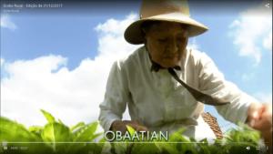 o chá preto da Vovó no Globo Rural